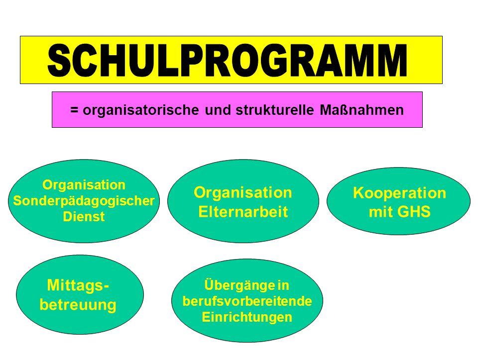 = organisatorische und strukturelle Maßnahmen Organisation Sonderpädagogischer Dienst Organisation Elternarbeit Kooperation mit GHS Mittags- betreuung