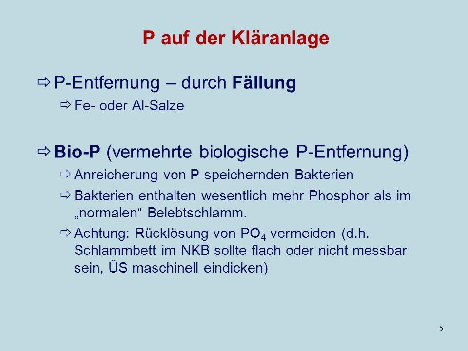 5 P auf der Kläranlage P-Entfernung – durch Fällung Fe- oder Al-Salze Bio-P (vermehrte biologische P-Entfernung) Anreicherung von P-speichernden Bakterien Bakterien enthalten wesentlich mehr Phosphor als im normalen Belebtschlamm.