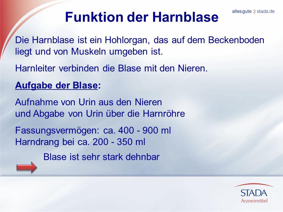 Funktion der Harnblase Die Harnblase ist ein Hohlorgan, das auf dem Beckenboden liegt und von Muskeln umgeben ist. Harnleiter verbinden die Blase mit