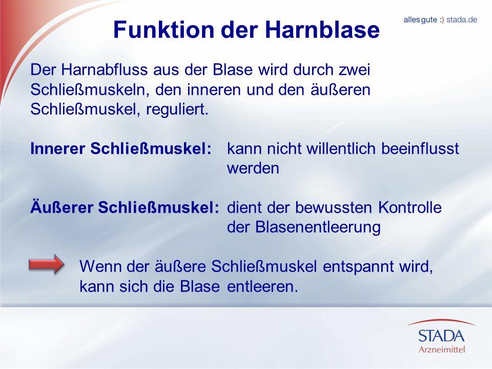 Funktion der Harnblase Der Harnabfluss aus der Blase wird durch zwei Schließmuskeln, den inneren und den äußeren Schließmuskel, reguliert. Innerer Sch