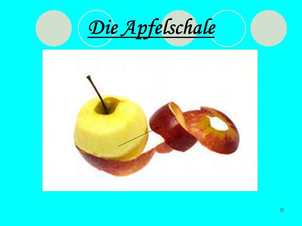 12 Die Apfelschale