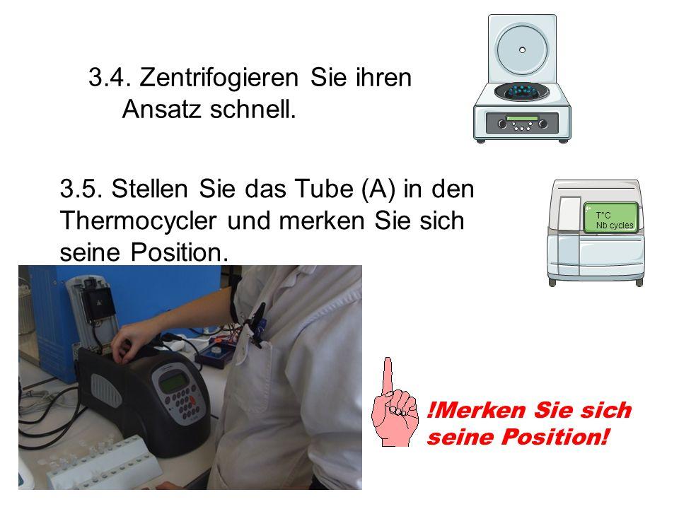 3.4. Zentrifogieren Sie ihren Ansatz schnell. 3.5. Stellen Sie das Tube (A) in den Thermocycler und merken Sie sich seine Position. !Merken Sie sich s