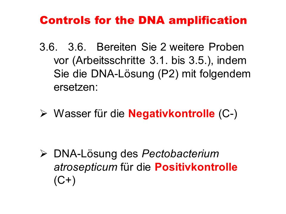 3.6.3.6.Bereiten Sie 2 weitere Proben vor (Arbeitsschritte 3.1. bis 3.5.), indem Sie die DNA-Lösung (P2) mit folgendem ersetzen: Wasser für die Negati