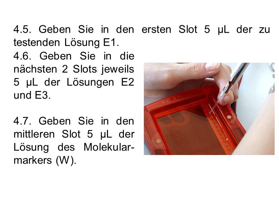 4.5. Geben Sie in den ersten Slot 5 µL der zu testenden Lösung E1. 4.6. Geben Sie in die nächsten 2 Slots jeweils 5 µL der Lösungen E2 und E3. 4.7. Ge