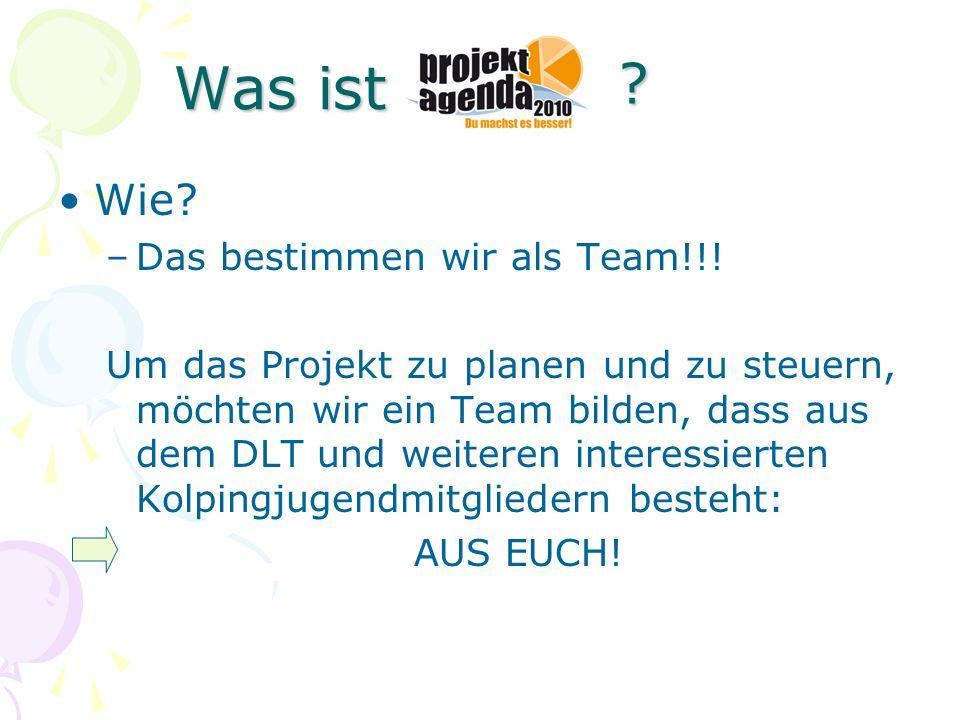 Wie? –Das bestimmen wir als Team!!! Um das Projekt zu planen und zu steuern, möchten wir ein Team bilden, dass aus dem DLT und weiteren interessierten