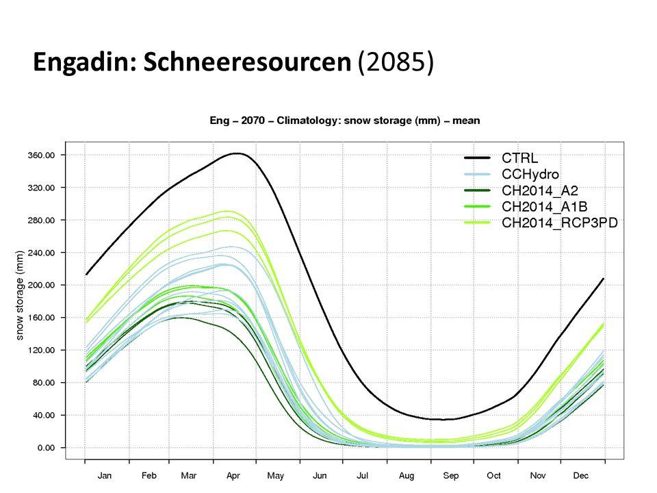 Engadin: Schneeresourcen (2085)