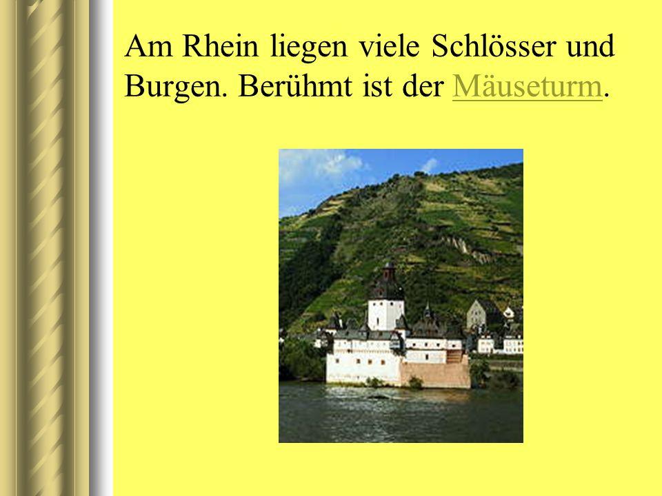 Am Rhein liegen viele Schlösser und Burgen. Berühmt ist der Mäuseturm.Mäuseturm