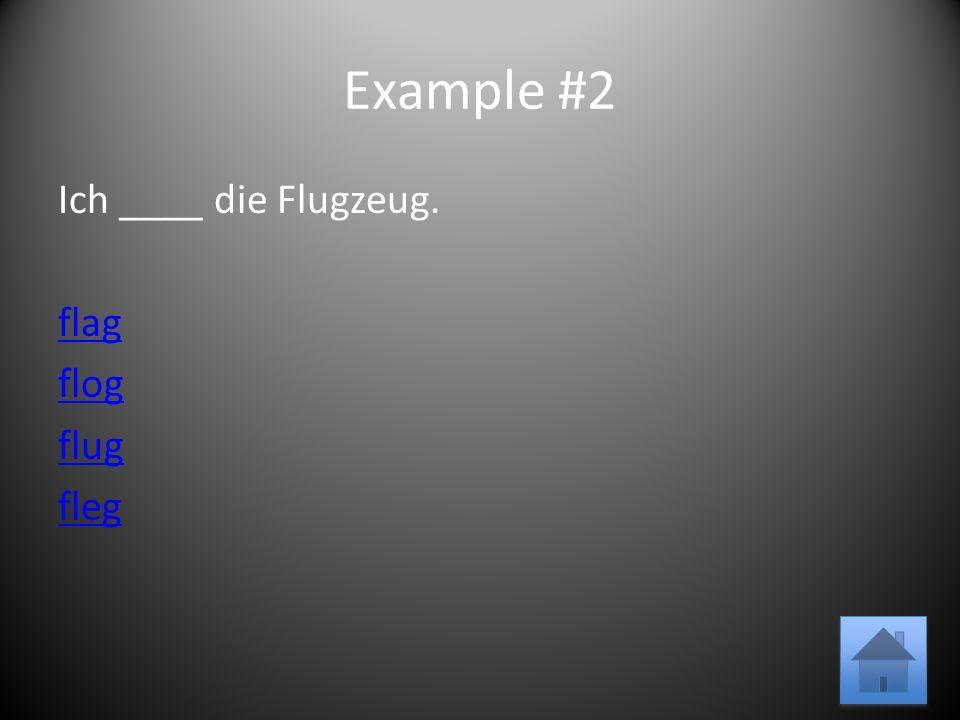Example #2 Ich ____ die Flugzeug. flag flog flug fleg