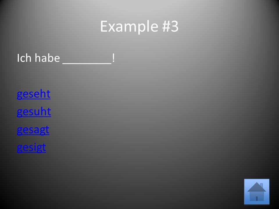 Example #3 Ich habe ________! geseht gesuht gesagt gesigt