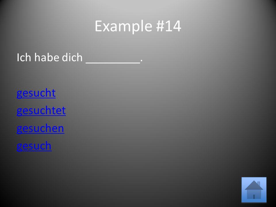 Example #14 Ich habe dich _________. gesucht gesuchtet gesuchen gesuch