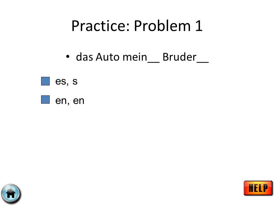 Practice: Problem 1 das Auto mein__ Bruder__ es, s en, en