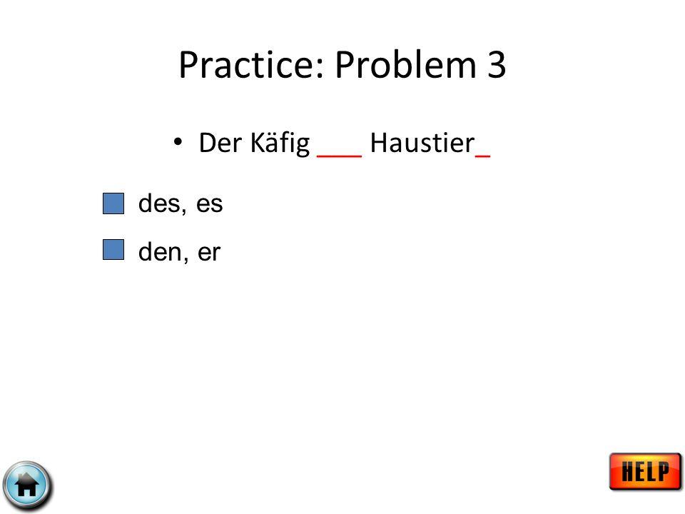 Practice: Problem 3 Der Käfig ___ Haustier_ des, es den, er