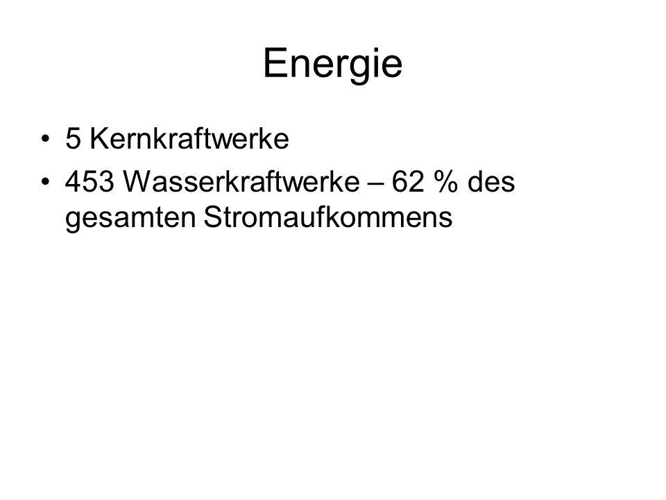 Energie 5 Kernkraftwerke 453 Wasserkraftwerke – 62 % des gesamten Stromaufkommens
