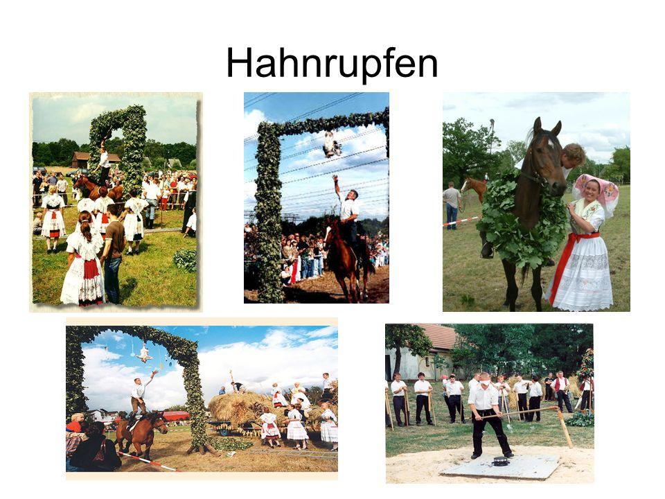 Hahnrupfen