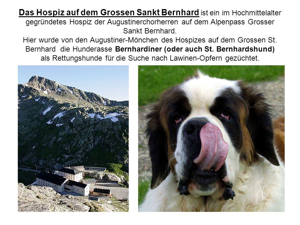 Das Hospiz auf dem Grossen Sankt Bernhard ist ein im Hochmittelalter gegründetes Hospiz der Augustinerchorherren auf dem Alpenpass Grosser Sankt Bernh