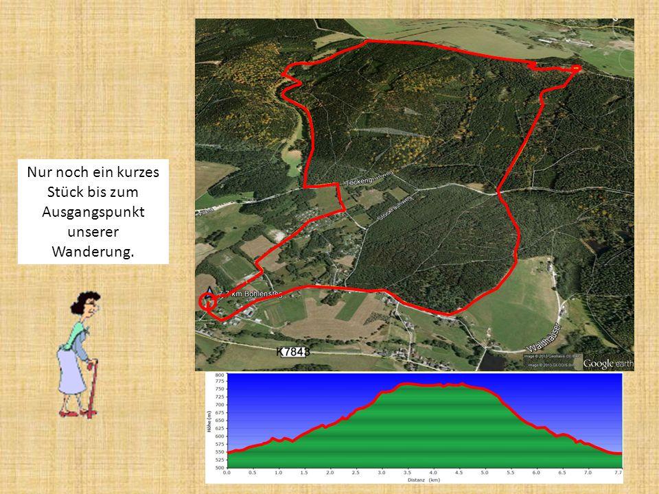 Von nun an gehts bergab. Nach 6,1 Kilometern ist die Lohehütte erreicht.