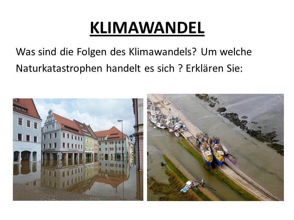 KLIMAWANDEL 2.
