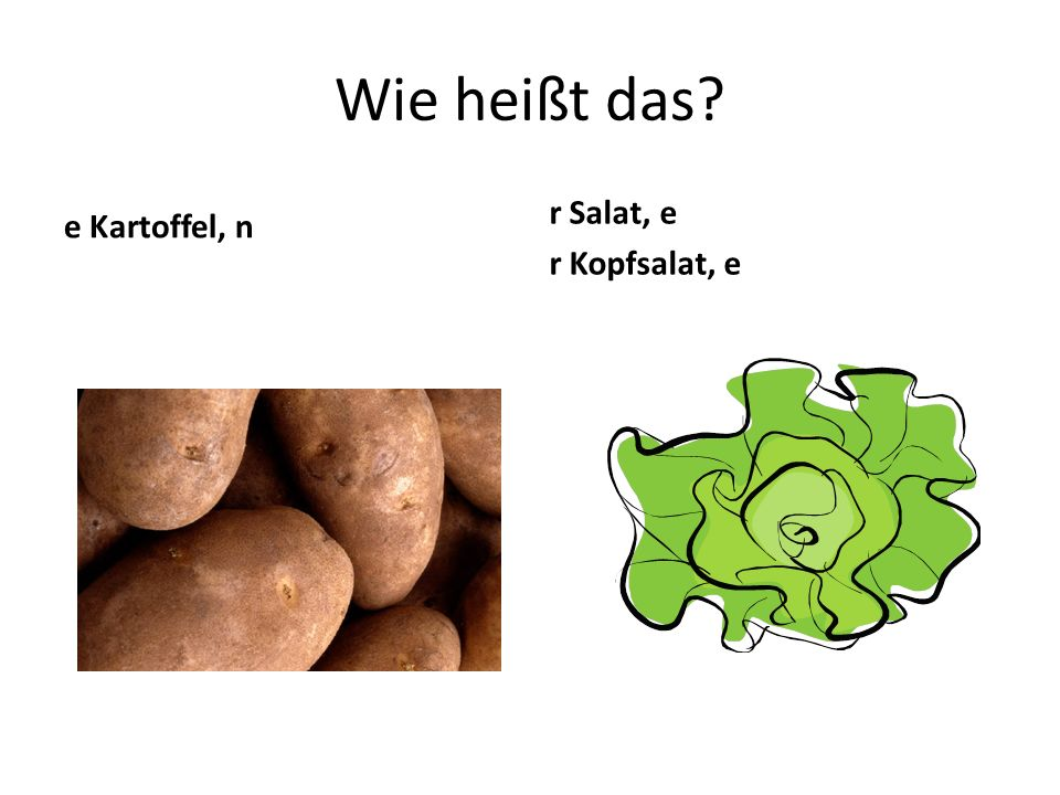 Wie heißt das? e Kartoffel, n r Salat, e r Kopfsalat, e