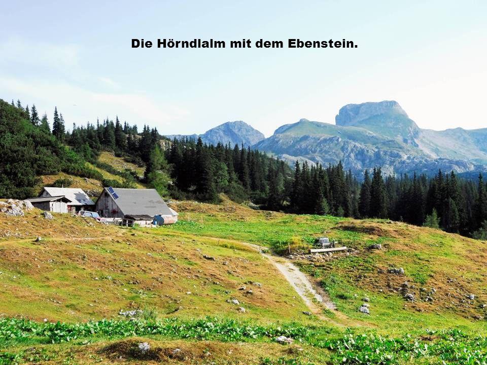 Die Hörndlalm mit dem Ebenstein.