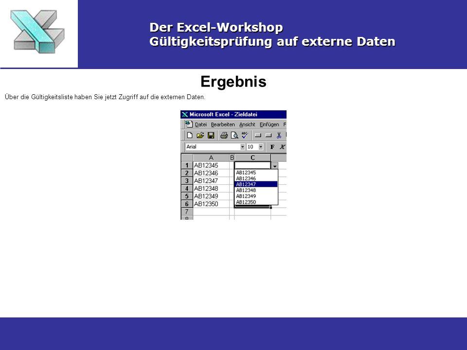 Ergebnis Der Excel-Workshop Gültigkeitsprüfung auf externe Daten Über die Gültigkeitsliste haben Sie jetzt Zugriff auf die externen Daten.