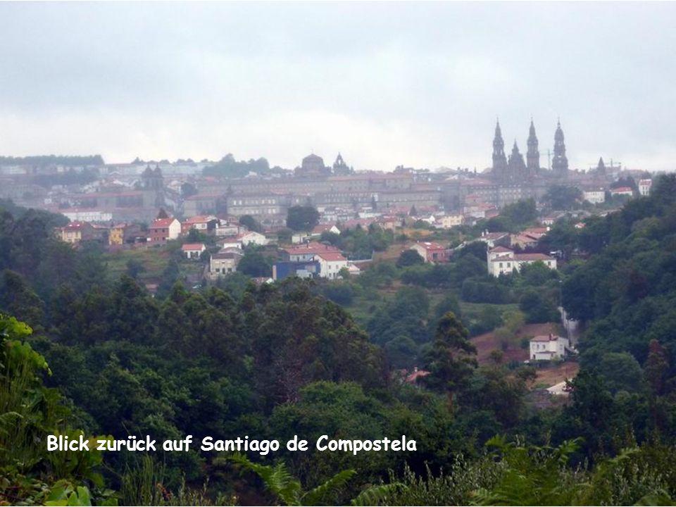 Camino de Santiago VI Kannst du nicht wie ein Adler fliegen, steige Schritt für Schritt bergan; wer mit Mühe den Gipfel gewann, hat auch die Welt zu Füßen liegen.