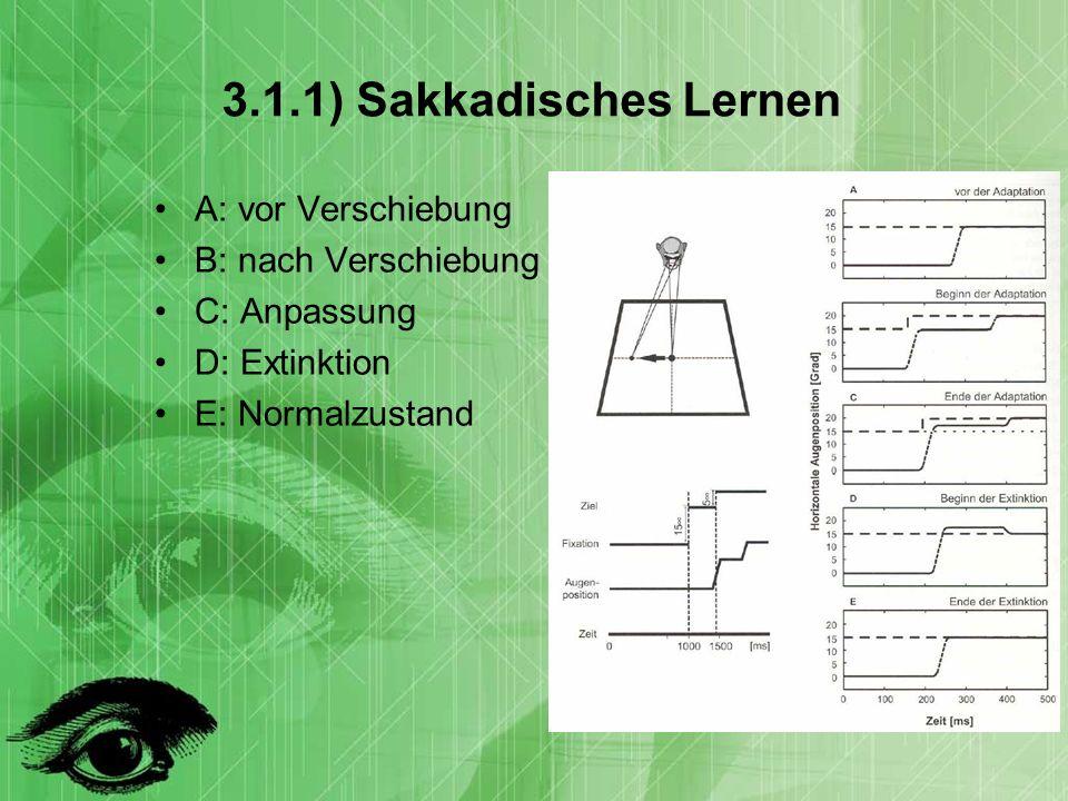 3.1.1) Sakkadisches Lernen A: vor Verschiebung B: nach Verschiebung C: Anpassung D: Extinktion E: Normalzustand