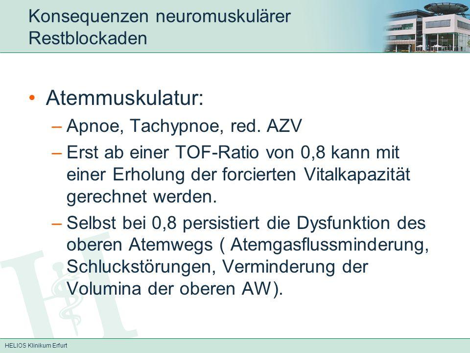 HELIOS Klinikum Erfurt Konsequenzen neuromuskulärer Restblockaden Atemmuskulatur: –Apnoe, Tachypnoe, red. AZV –Erst ab einer TOF-Ratio von 0,8 kann mi