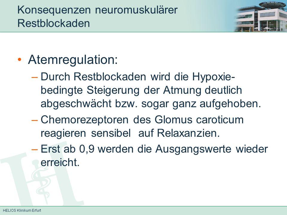 HELIOS Klinikum Erfurt Konsequenzen neuromuskulärer Restblockaden Atemregulation: –Durch Restblockaden wird die Hypoxie- bedingte Steigerung der Atmun