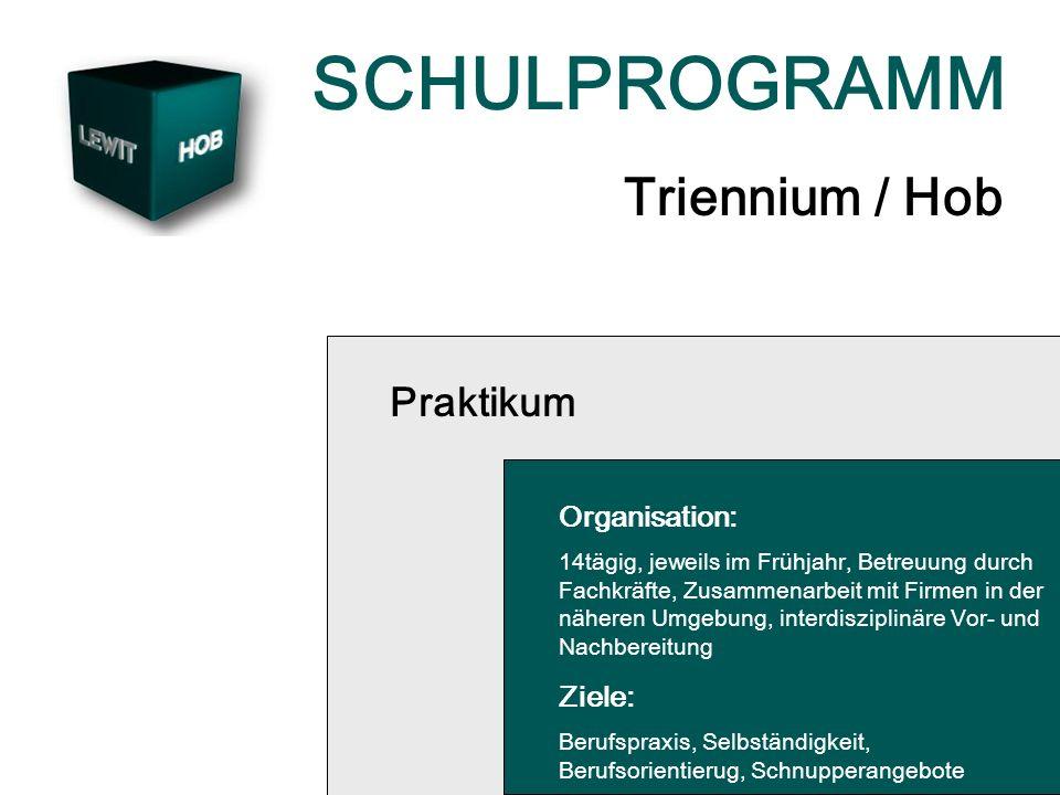 SCHULPROGRAMM Triennium / Hob Praktikum Organisation: 14tägig, jeweils im Frühjahr, Betreuung durch Fachkräfte, Zusammenarbeit mit Firmen in der näheren Umgebung, interdisziplinäre Vor- und Nachbereitung Ziele: Berufspraxis, Selbständigkeit, Berufsorientierug, Schnupperangebote