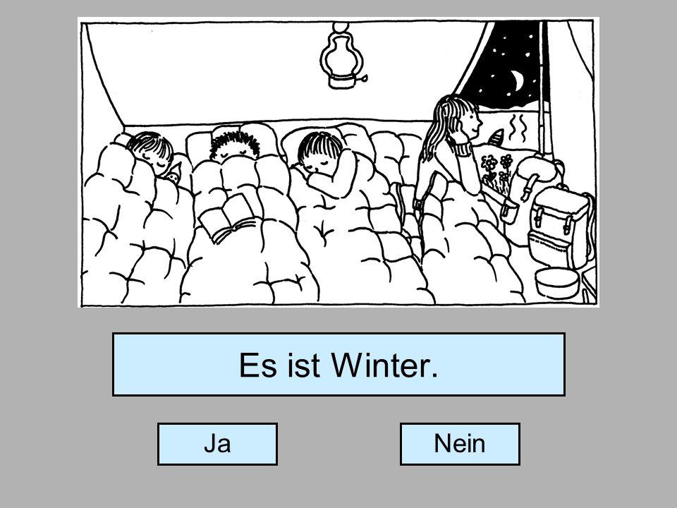 Es ist Winter. JaNein