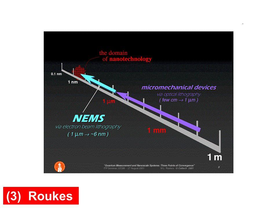 (3) Roukes
