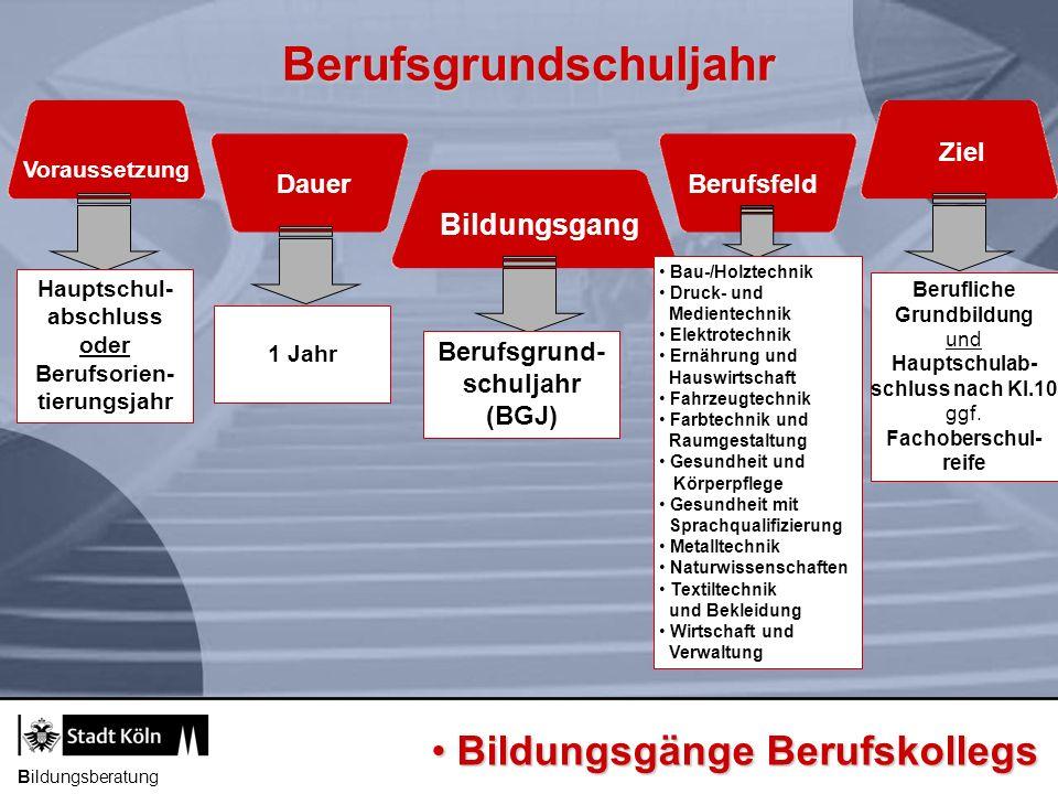 Berufsgrundschuljahr Bildungsgang Voraussetzung DauerBerufsfeld Ziel Berufsgrund- schuljahr (BGJ) 1 Jahr Hauptschul- abschluss oder Berufsorien- tieru