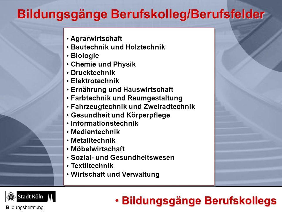 Klassen für Schüler/-innen ohne Berufsausbildung Bildungsgang Voraussetzung Dauer Ziel Klassen für Schüler/-innen ohne Berufsausbildung (KSoB) BvB Werkstattjahr BQF Berufsbezogene Kenntnisse ggf.
