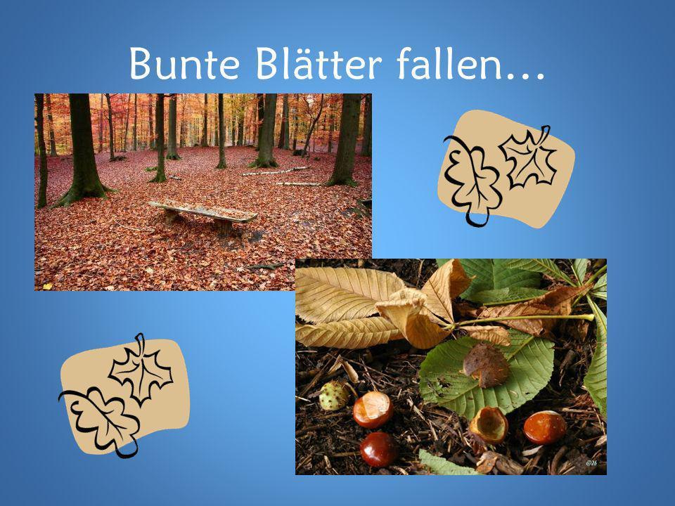 Bunte Blätter fallen…