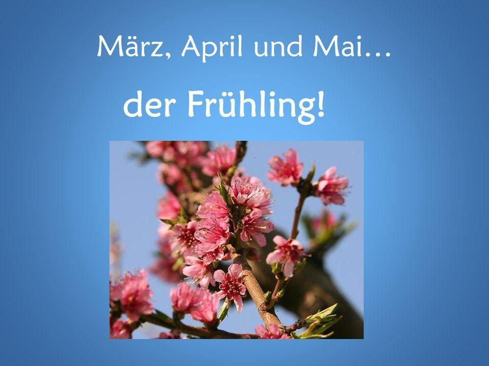 März, April und Mai… der Frühling!