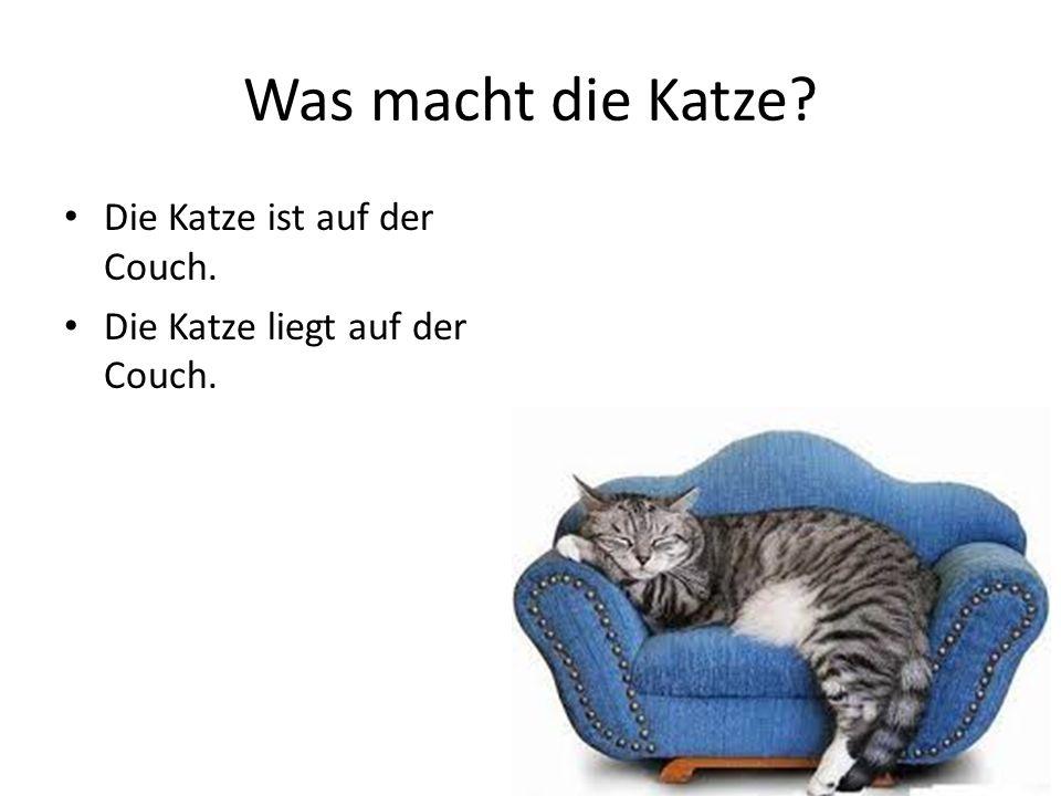 Die Katze ist auf der Couch. Die Katze liegt auf der Couch.
