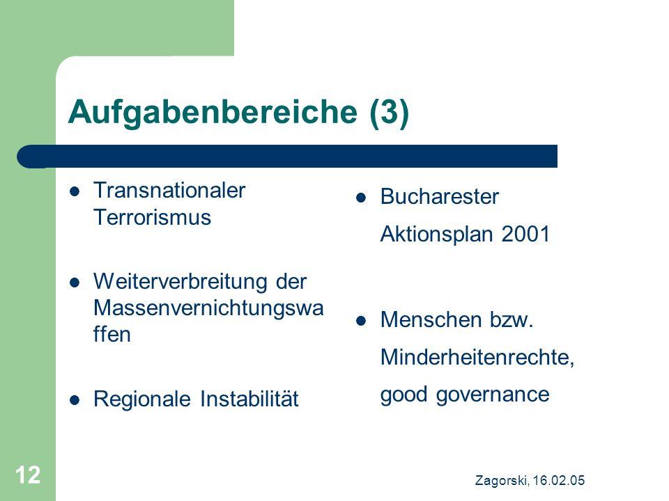 Zagorski, 16.02.05 12 Aufgabenbereiche (3) Transnationaler Terrorismus Weiterverbreitung der Massenvernichtungswa ffen Regionale Instabilität Buchares