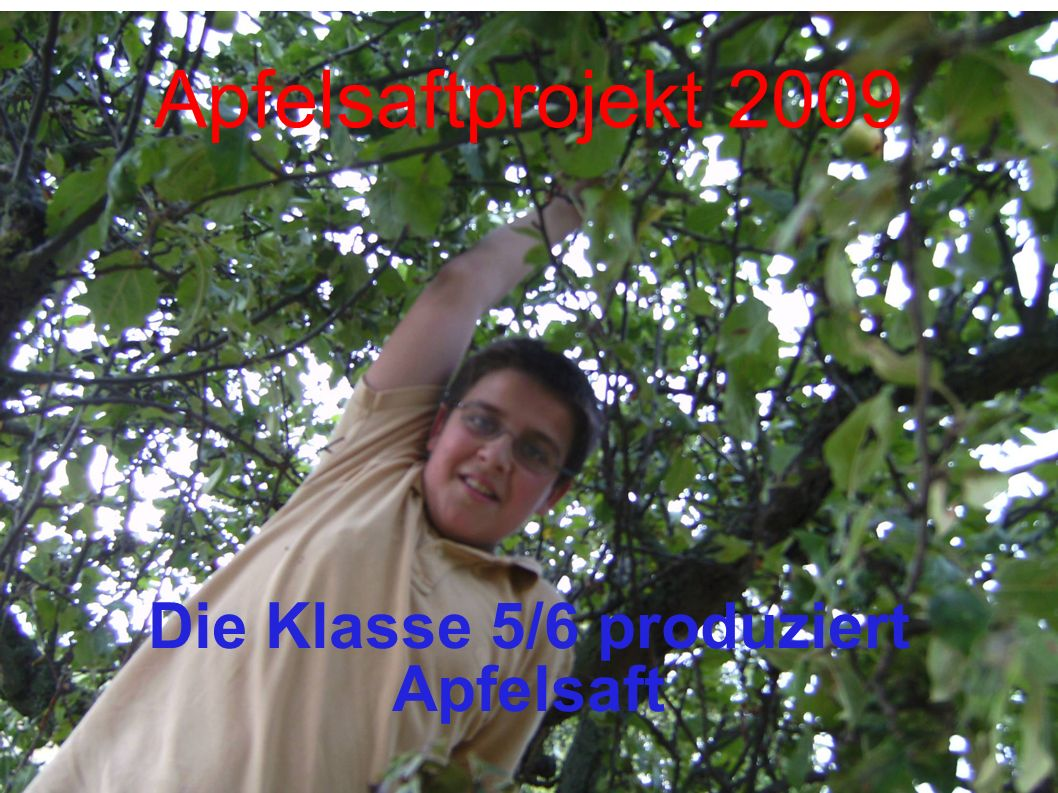 Apfelsaftprojekt 2009 Die Klasse 5/6 produziert Apfelsaft