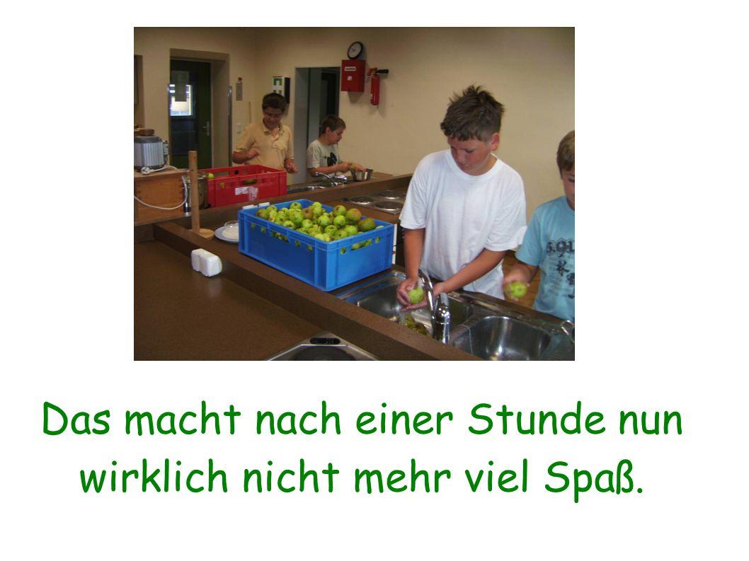 Bevor wir die Äpfel keltern und zu Saft verarbeiten können, müssen sie zuerst gewaschen werden.