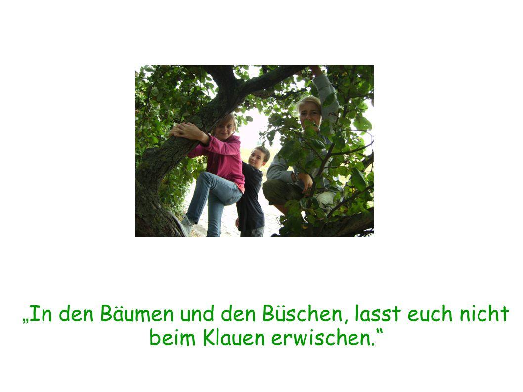 In den Bäumen und den Büschen, lasst euch nicht beim Klauen erwischen.