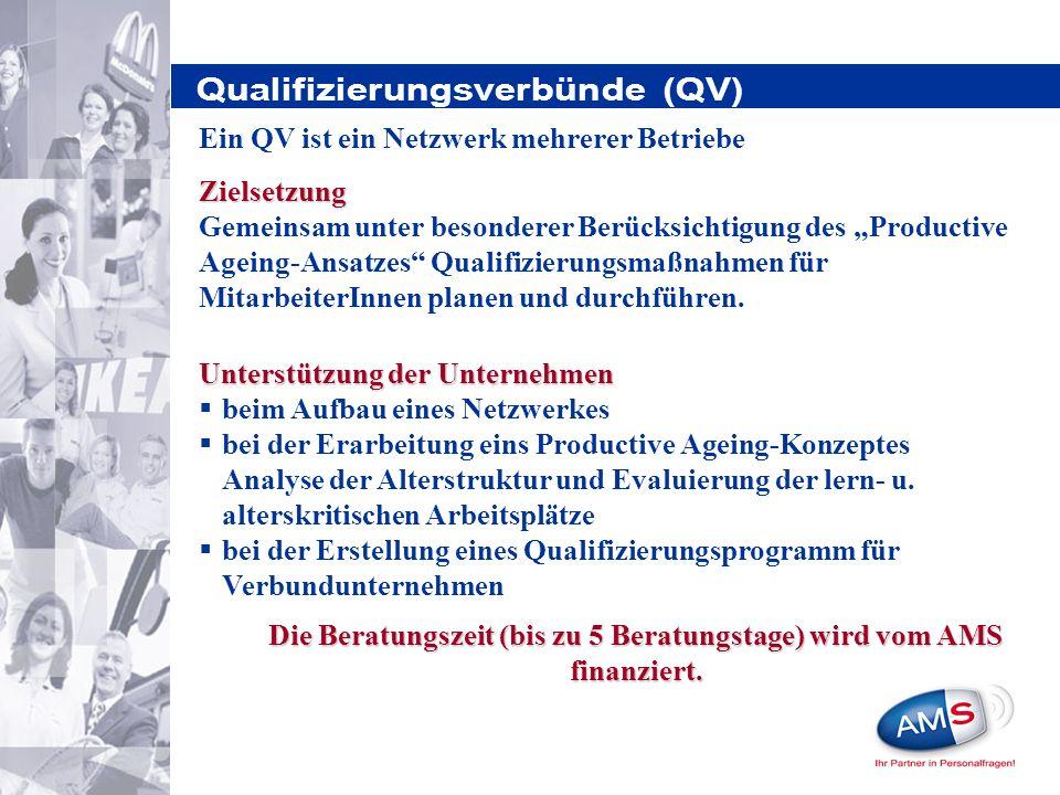 Qualifizierungsverbünde (QV) Unterstützung der Unternehmen beim Aufbau eines Netzwerkes bei der Erarbeitung eins Productive Ageing-Konzeptes Analyse der Alterstruktur und Evaluierung der lern- u.