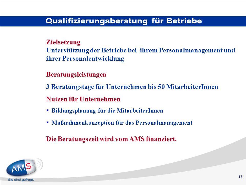 13 Qualifizierungsberatung für Betriebe Beratungsleistungen 3 Beratungstage für Unternehmen bis 50 MitarbeiterInnen Nutzen für Unternehmen Bildungsplanung für die MitarbeiterInnen Maßnahmenkonzeption für das Personalmanagement Die Beratungszeit wird vom AMS finanziert.