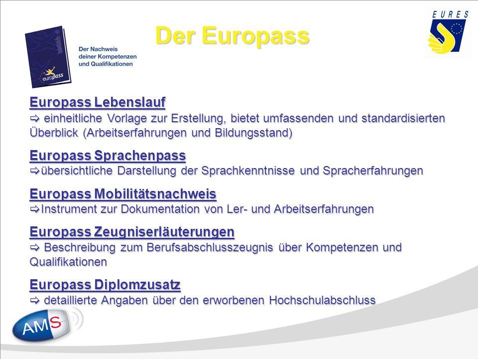 Der Europass Europass Lebenslauf einheitliche Vorlage zur Erstellung, bietet umfassenden und standardisierten Überblick (Arbeitserfahrungen und Bildun