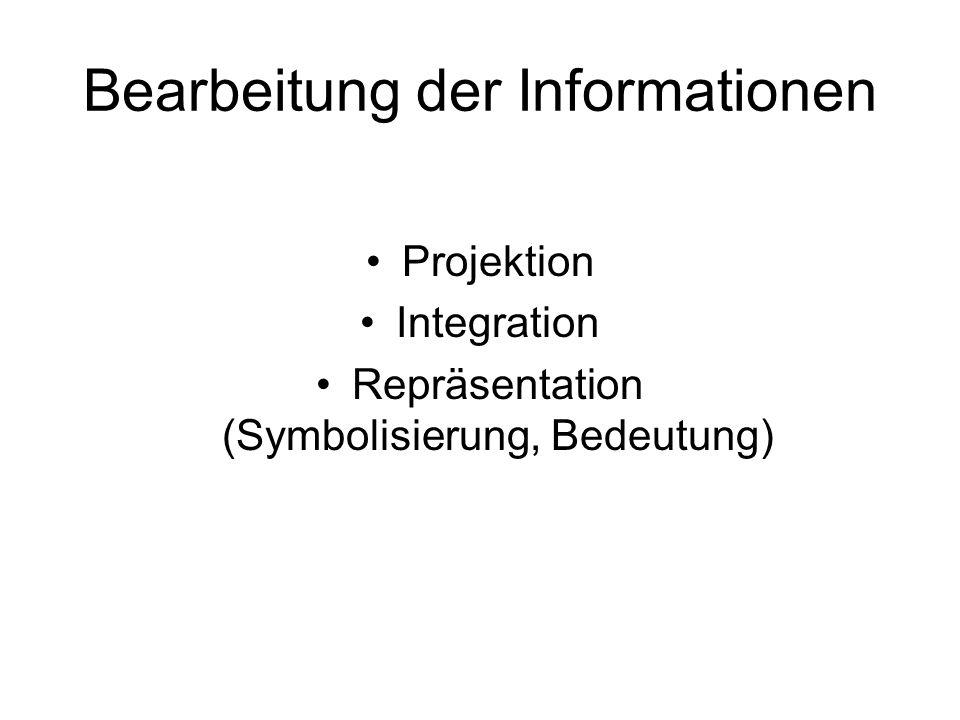 Bearbeitung der Informationen Projektion Integration Repräsentation (Symbolisierung, Bedeutung)