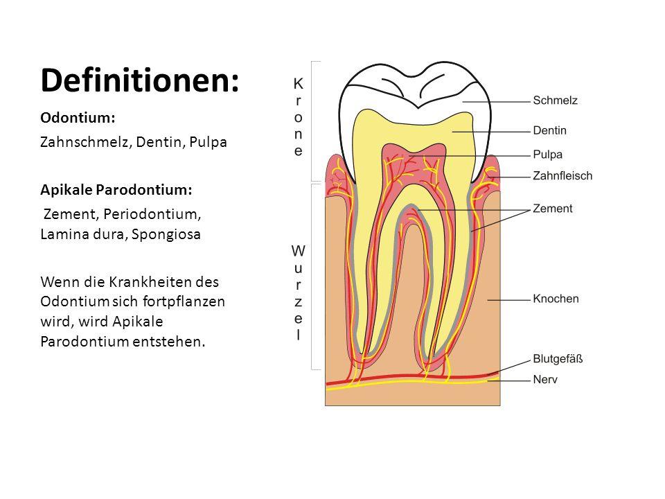 Definitionen: Odontium: Zahnschmelz, Dentin, Pulpa Apikale Parodontium: Zement, Periodontium, Lamina dura, Spongiosa Wenn die Krankheiten des Odontium sich fortpflanzen wird, wird Apikale Parodontium entstehen.