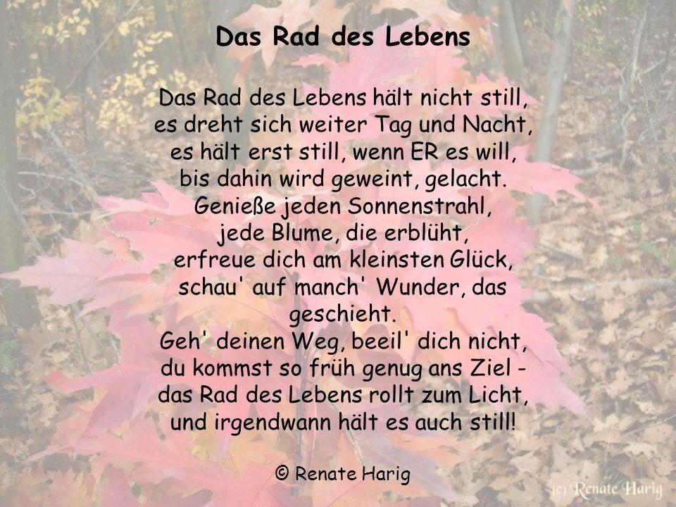 Herbstgedanken Die letzten Blumen blühen, Blätter fallen müd' vom Baum - die Sonn' lässt sie erglühen, bis beginnt der Wintertraum. Der Wind küsst Bla