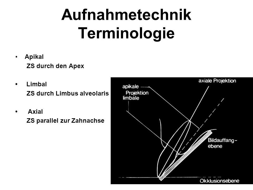 Aufnahmetechnik Terminologie Apikal ZS durch den Apex Limbal ZS durch Limbus alveolaris Axial ZS parallel zur Zahnachse
