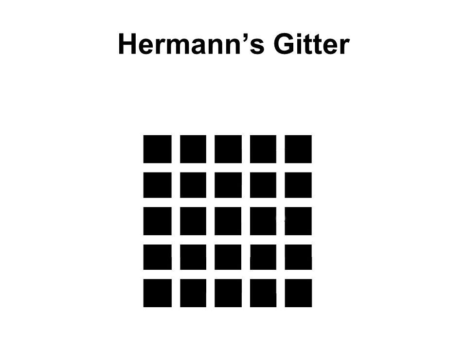 Hermanns Gitter