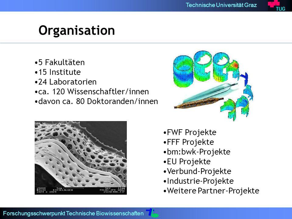 Technische Universität Graz Forschungsschwerpunkt Technische Biowissenschaften Organisation 5 Fakultäten 15 Institute 24 Laboratorien ca. 120 Wissensc