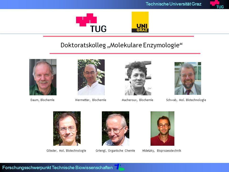Technische Universität Graz Forschungsschwerpunkt Technische Biowissenschaften Doktoratskolleg Molekulare Enzymologie Macheroux, BiochemieHermetter, Biochemie Griengl, Organische ChemieNidetzky, Bioprozesstechnik Schwab, Mol.